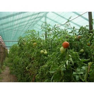 Затіняюча сітка Karatzis 6х50 м 35% зелена