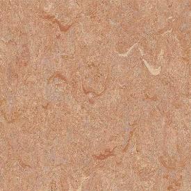 Лінолеум Graboplast Top Extra ПВХ 2,4 мм 4х27 м (4213-272)