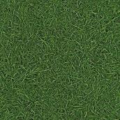 Лінолеум IVC LEOLINE Bingo GRASS 25 2,5 м