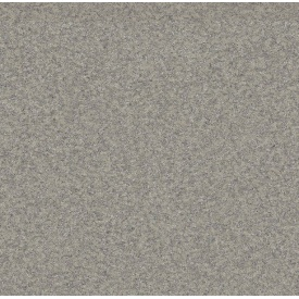 Лінолеум PREMIUM NEVADA 9001 2 мм 3 м