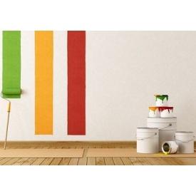 Фарбування стін в будинку