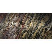 Каменный шпон прозрачный Forest Fire 610х1220 мм