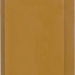 Вагонка ПВХ Стимекс светло-коричневая 100x3000х10 мм