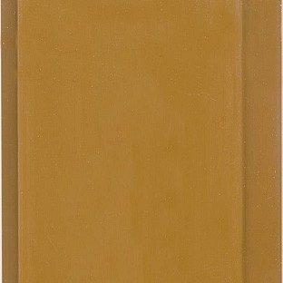 Вагонка ПВХ Стімекс світло-коричнева 100х6000х10 мм
