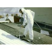 Фарбування даху з шиферу
