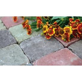 Тротуарная плитка Камень Винтаж бетонная сухопрессованная 20х10х6 см без фаски