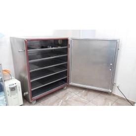 Озоновий стерилізатор для обробки інструменту 20 м/год