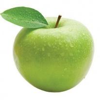 Саженцы яблони