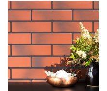 Фасадна плитка клінкерна Paradyz CLOUD ROSA 24,5x6,6 см