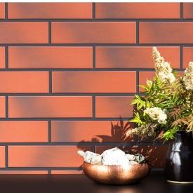 Фасадная плитка клинкерная Paradyz CLOUD ROSA 24,5x6,6 см