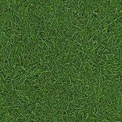 Дитячий лінолеум Leoline Smart SURFACES Grass 25