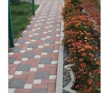 Тротуарная плитка Золотой Мандарин Квадрат большой 200х200х60 мм на сером цементе черный