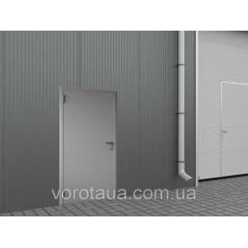 Двері технічні DoorHan 1080х2050 мм одностулкові глухі