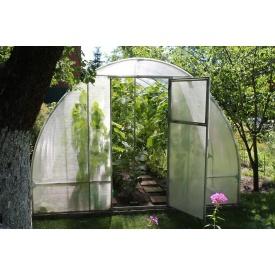 Теплиця Люкс 3х6х2м з полікарбонатом Greenhouse 6 мм
