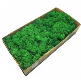 Стабілізований мох SO Green темно-зелений 0,5 кг (078)
