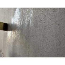Грунтування стін в будинку