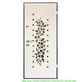 Двери входные ТЕПЛОСТАЛЬ 86-205 П Нст8 RAL1015 Нсб дуб серый