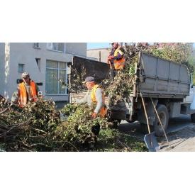 Вывоз срезанных деревьев и веток