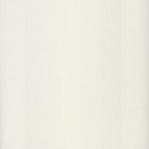 Панель ПВХ Стімекс Elegans молочно-біла Блиск 250х6000х10 мм
