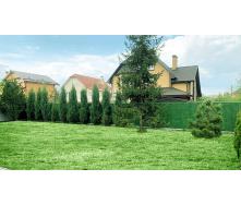 Благоустрій територій зеленим парканом з ПВХ 100-200 см
