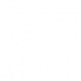Краска для оцинкованных крыш и шифера БАЙРИС коричневая 5 кг