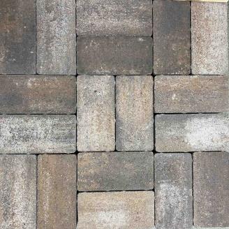 Тротуарна плитка Gartec Цегла без фаски 200х100х60 мм колор мікс Капучино