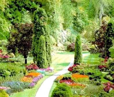 Пример перепланировки сада