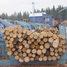 Купить лесоматериалы. Как измерить объем лесоматериала?