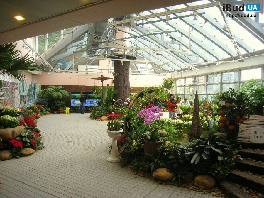 Зимовий сад на мансарді