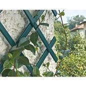 Раздвижные шпалеры для поддержки вьющихся растений Tenax Треплас 1x2 м зеленые