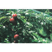 Сетка для защиты от птиц Tenax Ортофлекс 10x12 мм 2x10 м зеленая