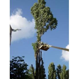 Видалення дерев частинами з автовишки