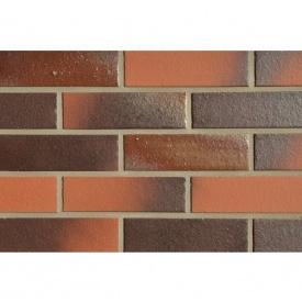 Клінкерна плитка ABC Klinkerguppe Buxtehude 240х71х10 мм (2104)