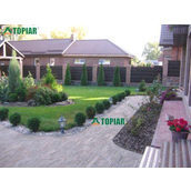 Полный комплекс услуг по озеленению участка