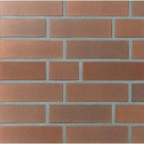 Клинкерный лицевой кирпич Terca Luneburg 240х115х71 мм красный пестрый