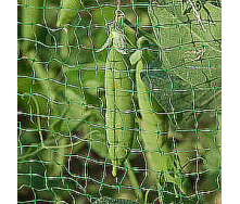 Сітка для захисту врожаю TENAX Ортофлекс 2х500 м зелена