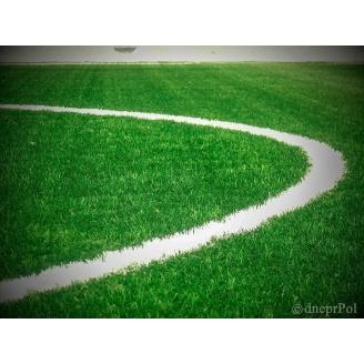 Газон футбольний