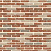 Кирпич ручной формовки Nelissen Beguinage Brick WV50 210x102x48 мм