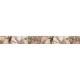 Плитка керамическая BELANI Фрезия Фриз Магнолия 50х5,4 см розовый