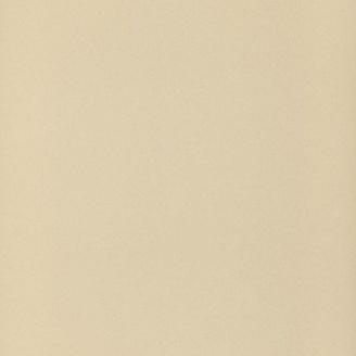 Плитка Zeus Ceramica Керамогранит ЗЕВС Omnia gres Spectrum 60х60 см Avоrio (zrm1r)