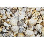 Декор Opoczno Nizza shells inserto B 300х450 мм