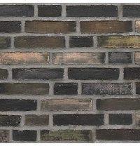 Цегла клінкерна ручного формування Petersen D-99 Dunkelbunt-Grau DNF 228x108x54 мм