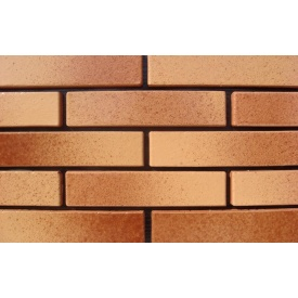 Фасадный облицовочный кирпич АВС-Klinkergruppe Leather&Honey 220х105х48 мм (Ref. 3200 L)