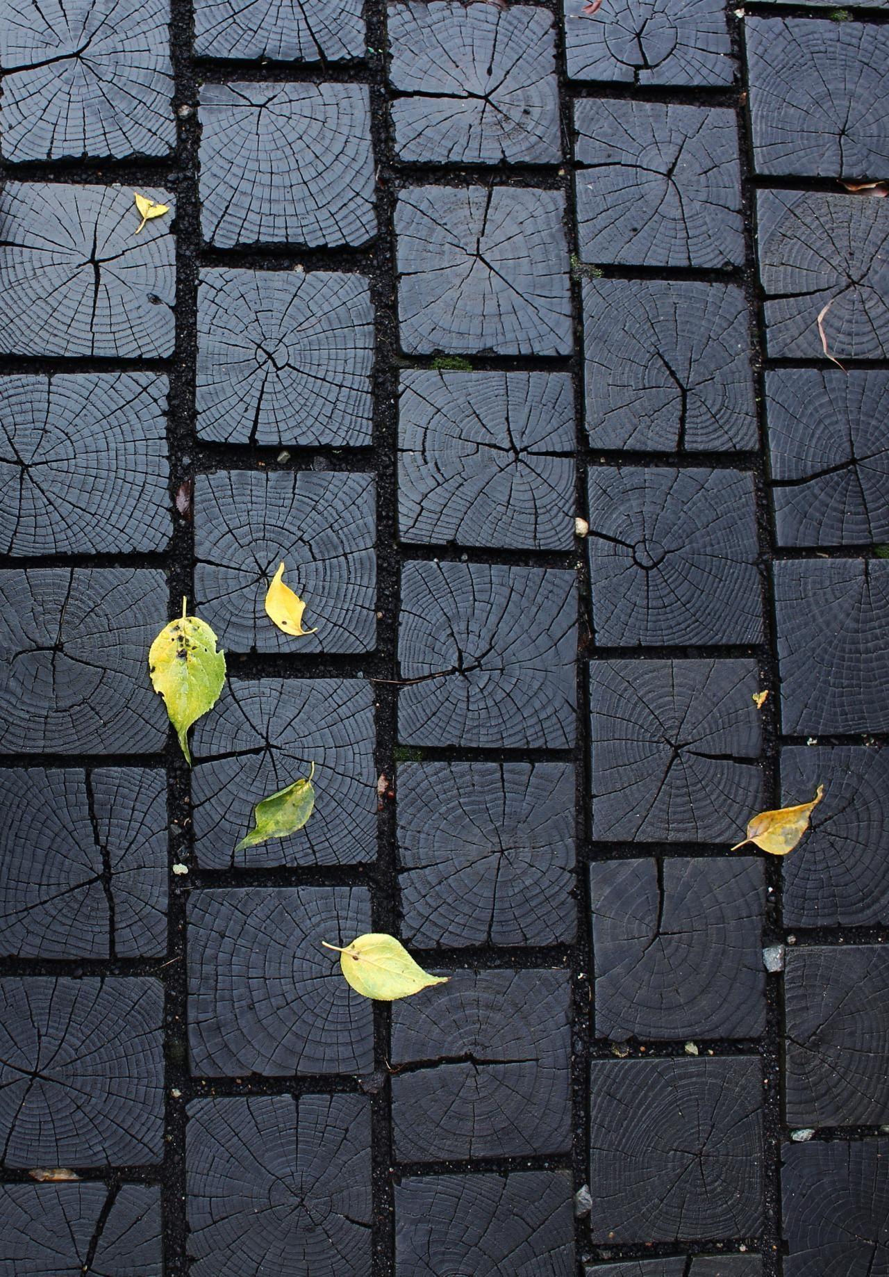 Деревянная брусчатка – хороший способ разнообразить текстуру улицы