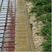 Поребрик Золотой Мандарин 1000х200х80 мм горчичный на сером цементе
