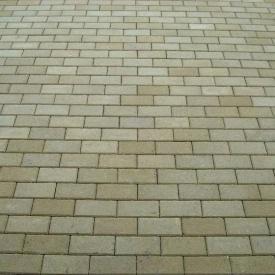 Тротуарна плитка Золотий Мандарин Цегла стандартна 200х100х80 мм на сірому цементі гірчичний