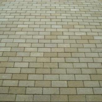 Тротуарная плитка Золотой Мандарин Кирпич стандартный 200х100х60 мм на сером цементе горчичный