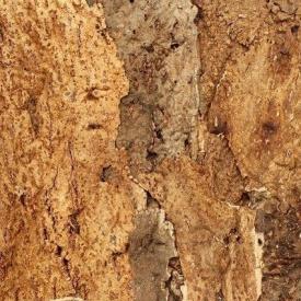 Настінний корок Wicanders Dekwall Exotic Horta 600х300х15мм