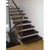 Лестница консольная Триумф Запад с металлическими перилами и деревянными ступенями