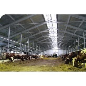 Будівництво тваринницьких ферм